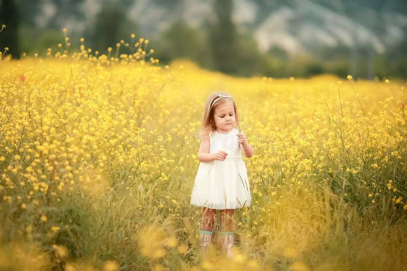 Happy girl in a yellow dress staying in the field of flowering rape. Nature blooms rape seed field royalty free stock photos