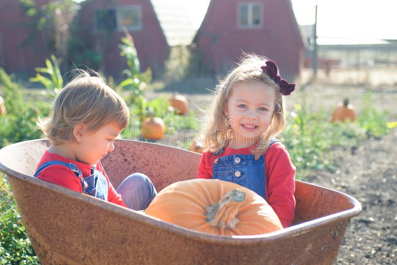 Happy girls sitting inside wheelbarrow at field pumpkin patch. Little sisters in jeans overalls sitting inside old wheelbarrow at farm field pumpkin patch royalty free stock images