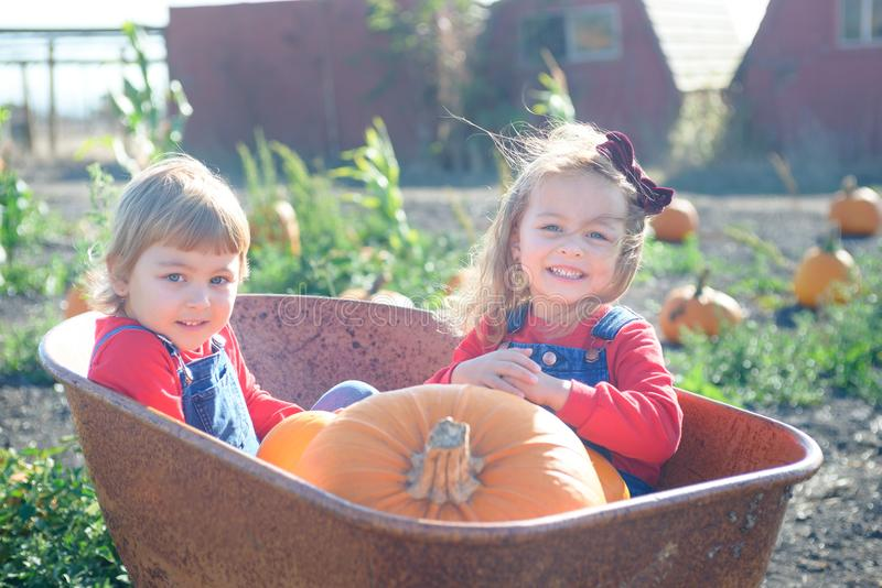 Happy girls sitting inside wheelbarrow at field pumpkin patch. Little sisters in jeans overalls sitting inside old wheelbarrow at farm field pumpkin patch stock image