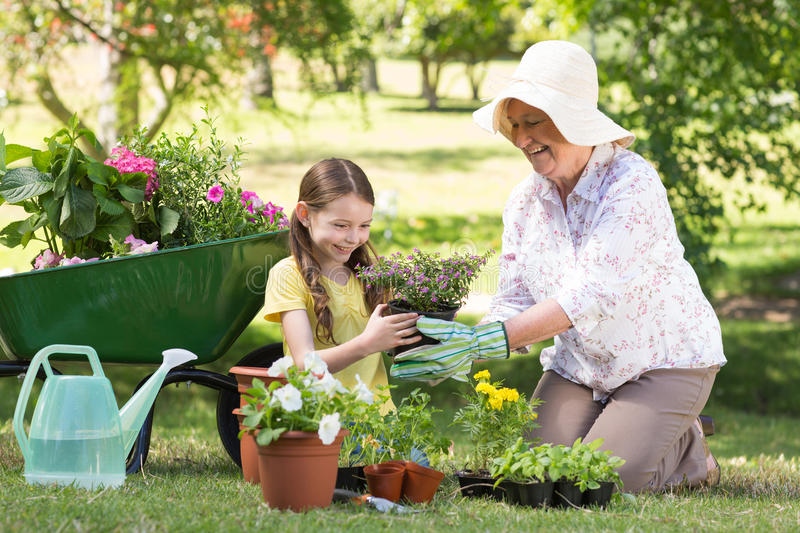 Happy grandmother with her granddaughter gardening royalty free stock images