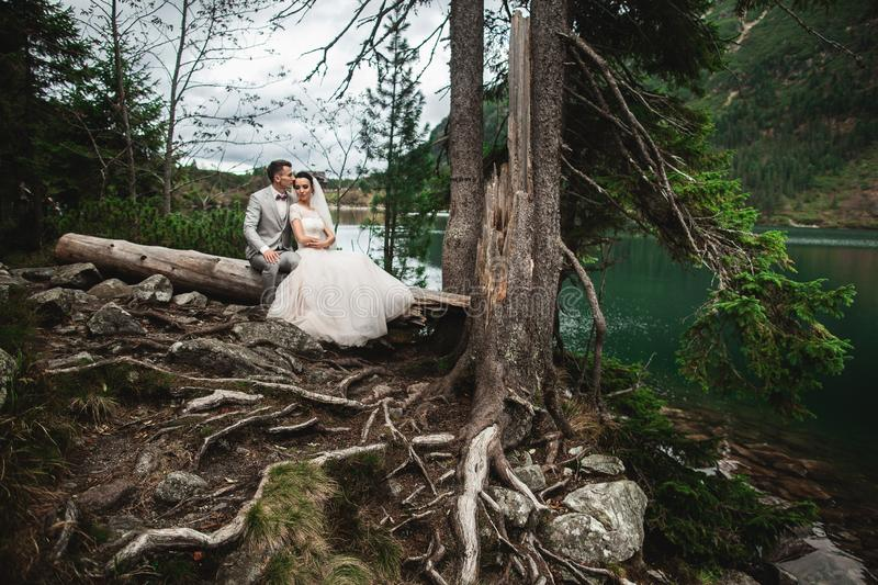 Happy groom and his charming new wife holding each other while sitting on the shore of forest lake Morskie Oko royalty free stock image