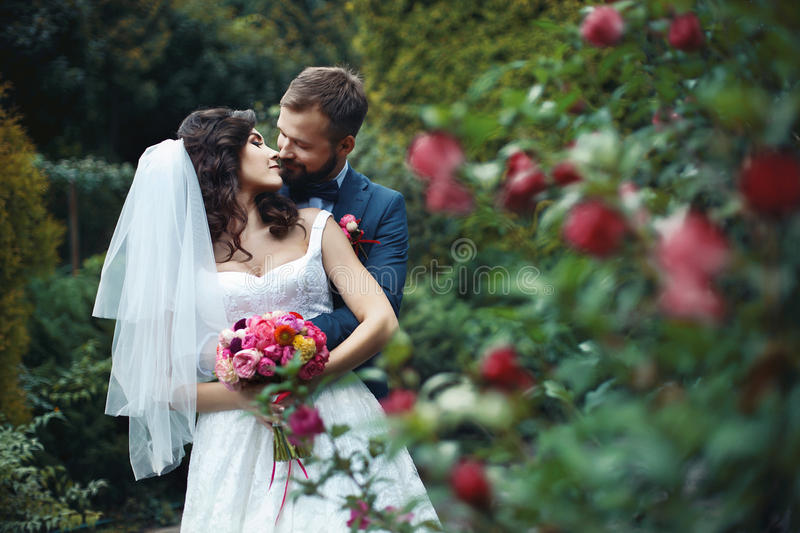 Happy groom hugging beautiful bride with bouquet from behind near flower bush royalty free stock images
