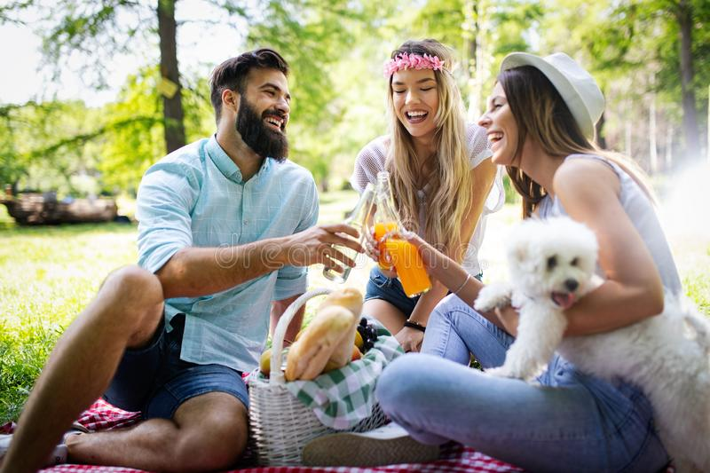 Happy group of friends relaxing and having fun on picnic in nature stock images