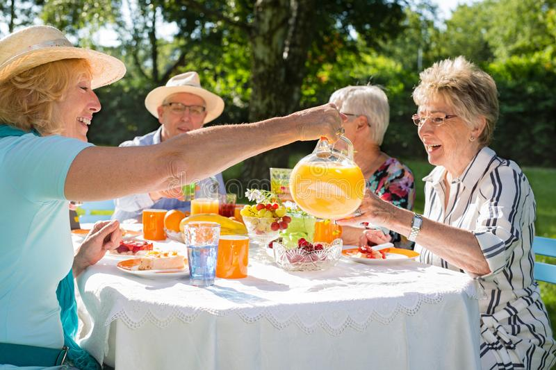 Happy group of senior friends are picnicking in park stock image