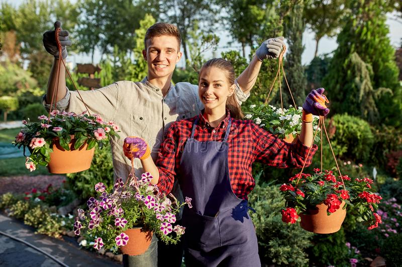Happy guy and girl gardeners hold pots with petunia in the wonderful garden on a sunny day. royalty free stock image