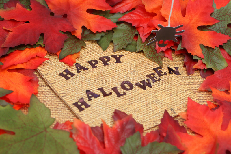 Download Happy halloween stock photo. Image of leaf, orange, halloween - 6383892