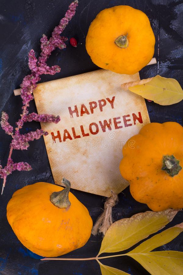 Happy Halloween. Banner with pumpkin and autumn leaf and dried flower on black background stock image
