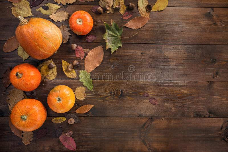 Happy Halloween! The concept of the autumn holiday. The little orange pumpkin with dry leaves lying on a brown wooden background, border, view from above royalty free stock images