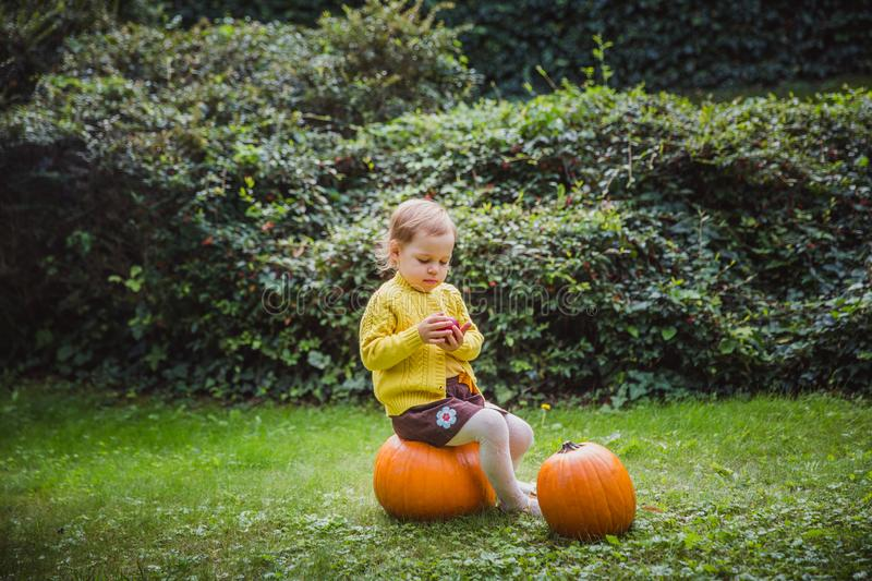 Happy Halloween. Cute little girl is sitting on a pumpkin and holding an apple in her hand. Autumn royalty free stock photos
