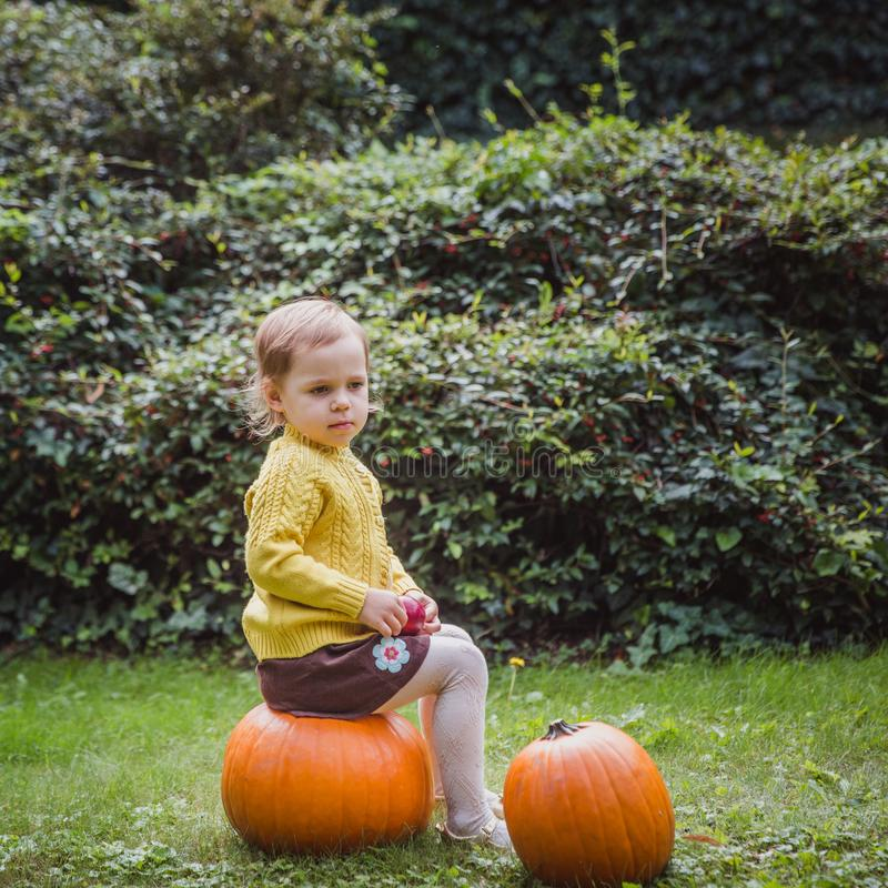 Happy Halloween. Cute little girl is sitting on a pumpkin and holding an apple in her hand. Autumn stock image