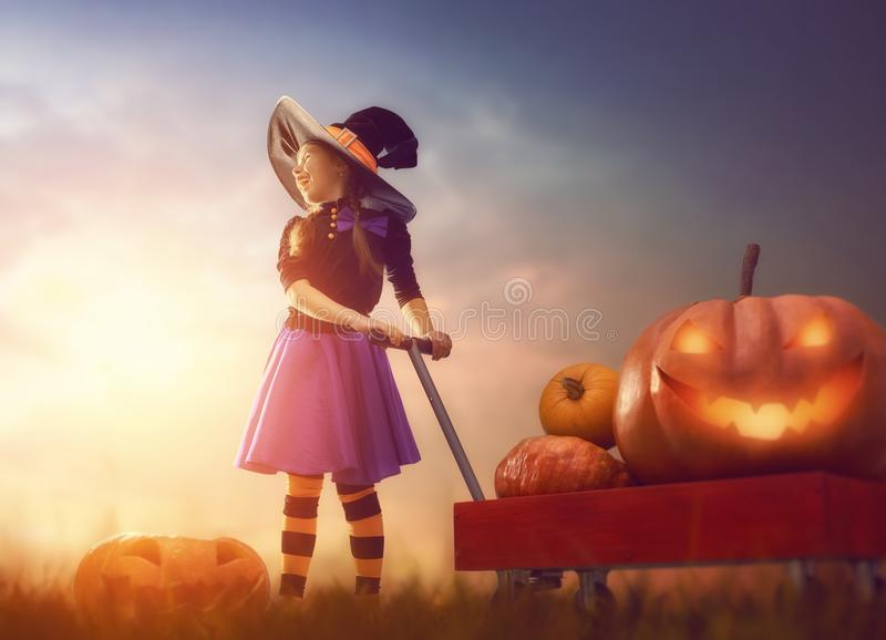 Witch with pumpkins royalty free stock photos