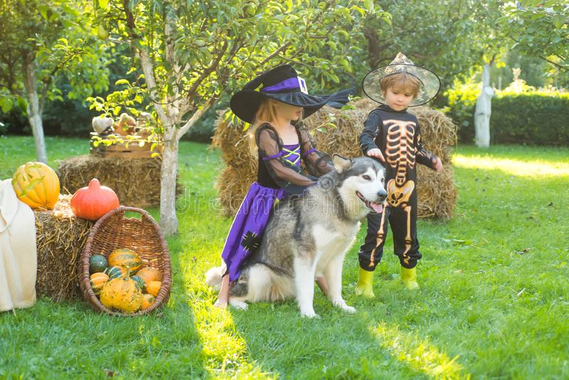 Happy Halloween, cute toddler girl and boy playing outdoors. Happy Halloween. Halloween portrait of happy cute child. royalty free stock images