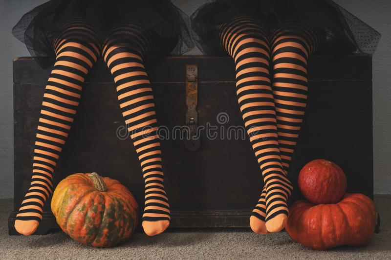 Happy halloween! Female feet in stockings with an orange pumpkin. Happy halloween! Female feet in stockings with an orange pumpkin royalty free stock images