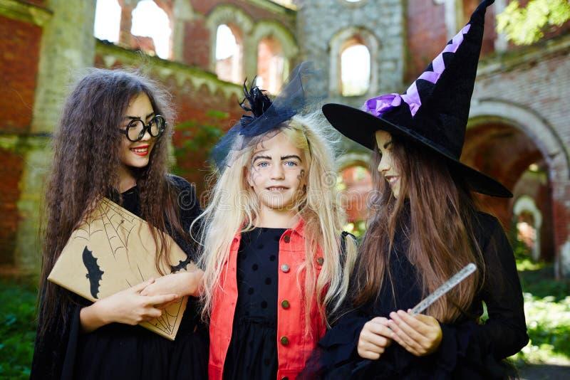 Halloween companions royalty free stock photos