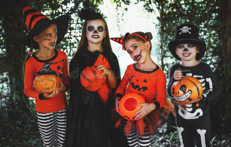 Happy Halloween! a group of children in suits and with pumpkins. In the forest royalty free stock photos