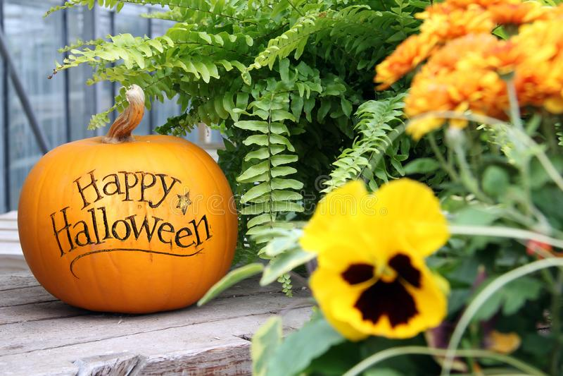 Happy Halloween-Kürbis stockbilder
