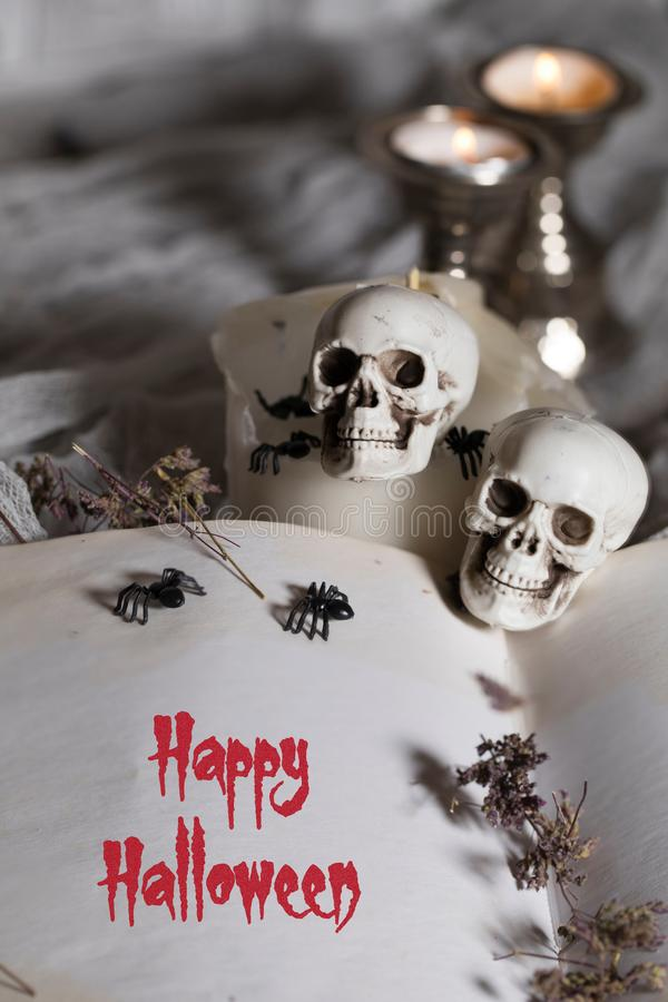 Happy Halloween. Opened book of bewitchment with free space for. Opened book of bewitchment with free space for a text. Bewitchment symbols - skulls, herbs stock images