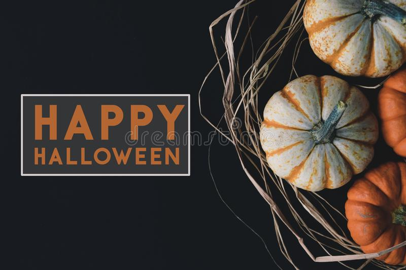 Happy Halloween graphic banner. Rustic October banner with mini pumpkins and Happy Halloween text on black background for holiday celebration royalty free stock photos