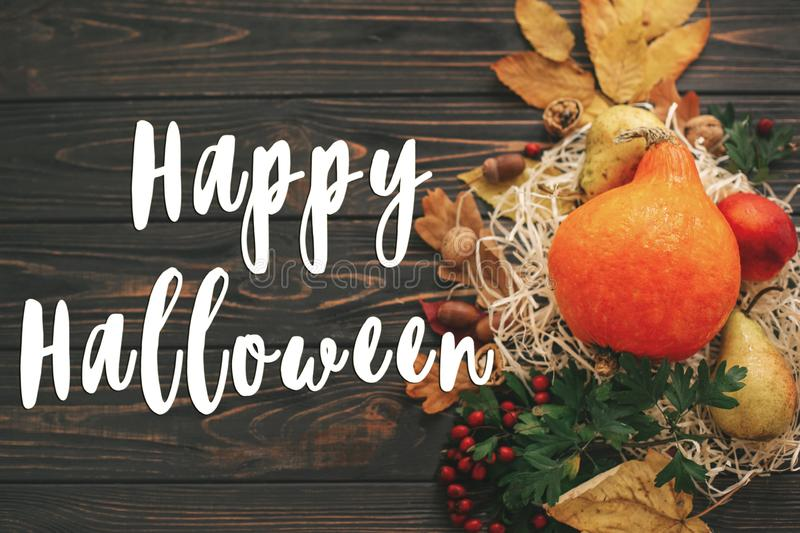 Happy Halloween Text on beautiful composition of Pumpkin, autumn. Vegetables with colorful leaves,acorns,nuts, berries on wooden rustic table. Seasons greeting royalty free stock image