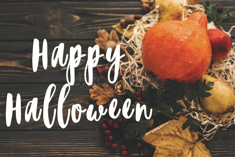 Happy Halloween Text on beautiful composition of Pumpkin, autumn. Vegetables with colorful leaves,acorns,nuts, berries on wooden rustic table. Seasons greeting stock photography