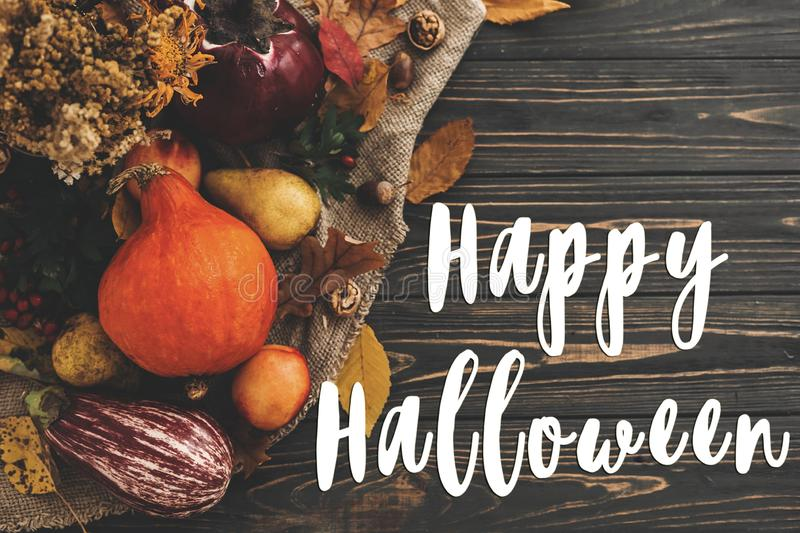 Happy Halloween Text on beautiful composition of Pumpkin, autumn. Vegetables with colorful leaves,acorns,nuts, berries on wooden rustic table. Seasons greeting stock photos