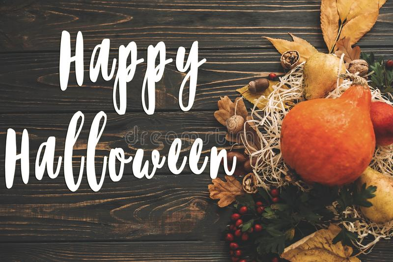 Happy Halloween Text on beautiful composition of Pumpkin, autumn. Vegetables with colorful leaves,acorns,nuts, berries on wooden rustic table. Seasons greeting royalty free stock photo