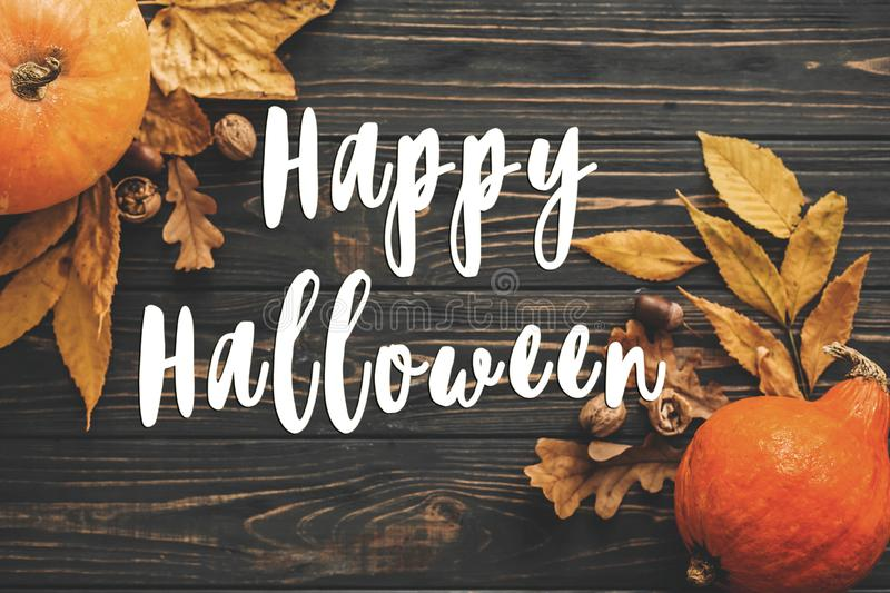 Happy Halloween Text on Beautiful Pumpkin with bright autumn lea stock images