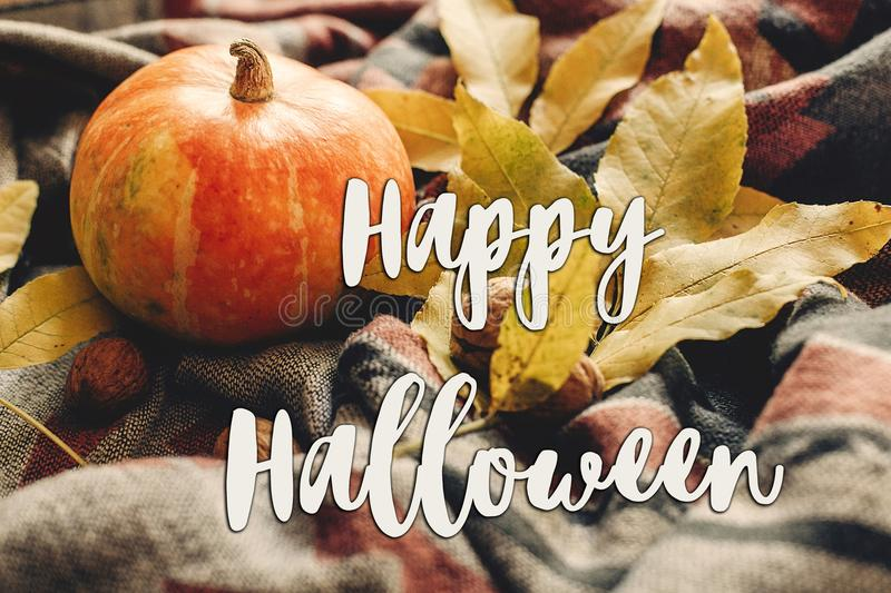 Happy halloween text sign on autumn pumpkin with colorful leaves royalty free stock image