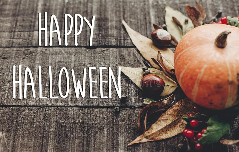 Happy halloween text sign, greeting card. fall image. beautiful. Pumpkin and leaves and berries on rustic wooden background, top view. cozy autumn mood. fall royalty free stock image