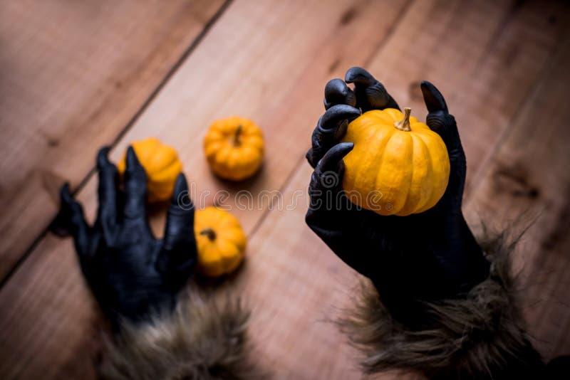 Happy Halloween Varulv eller zombiehänder som håller pumpa arkivbild