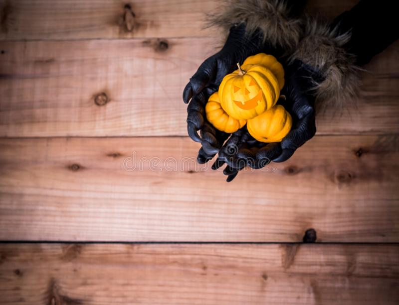 Happy Halloween cencept. Happy Halloween. Werewolf or zombie hands painting scary pumpkin for trick or treat party. copy space for text stock images