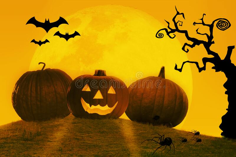 Happy haloween. Party with pumkin. Halloween Pumpkin Graphic Template royalty free stock photo