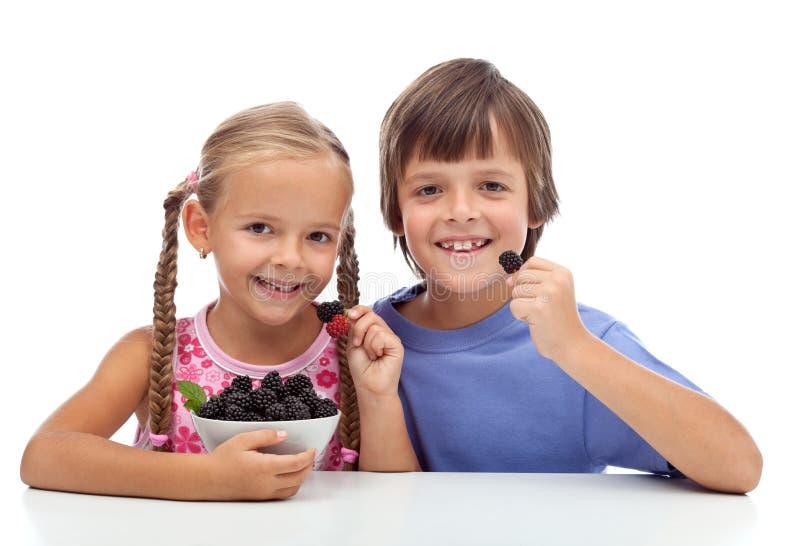 Happy healthy kids eating fresh blackberries stock images