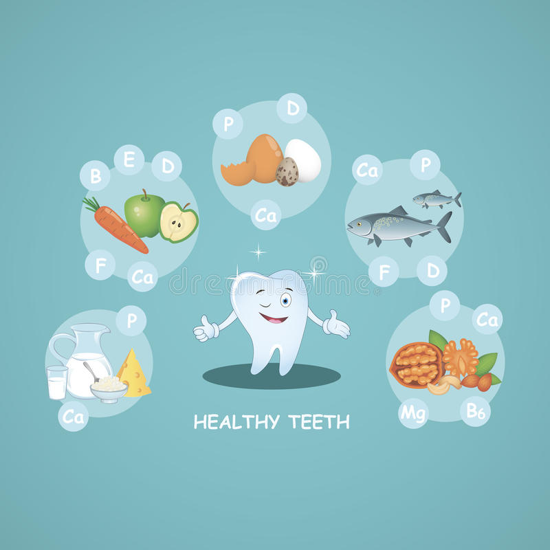 Happy healthy teeth. Proper nutrition. Healthy foods. Beautiful smile. Vector. Illustration for children dentistry an. Happy healthy teeth. Proper nutrition stock illustration