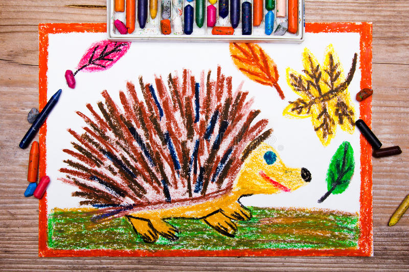 Happy hedgehog and autumn leaves royalty free stock photo