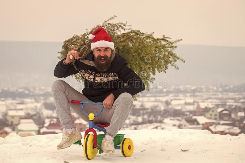 Happy hipster carrying xmas tree on white snow. Man riding tricycle on snowy landscape. Excited cyclist shouting in santa hat and sporty wear. Christmas and stock photography