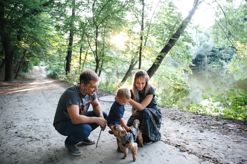Happy joyful young family father, mother and little son having fun outdoors with a dog, playing together in summer park royalty free stock photo