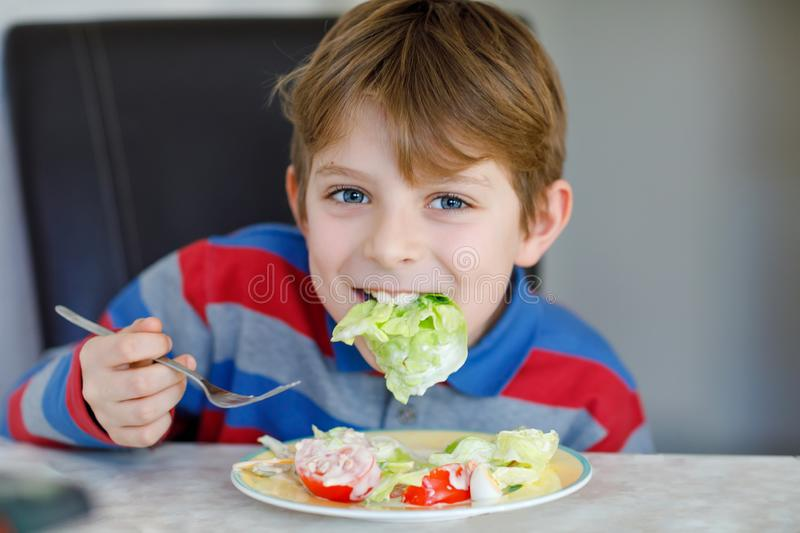 Happy kid boy eating fresh salad with tomato, cucumber and different vegetables as meal or snack. Healthy child enjoying royalty free stock images