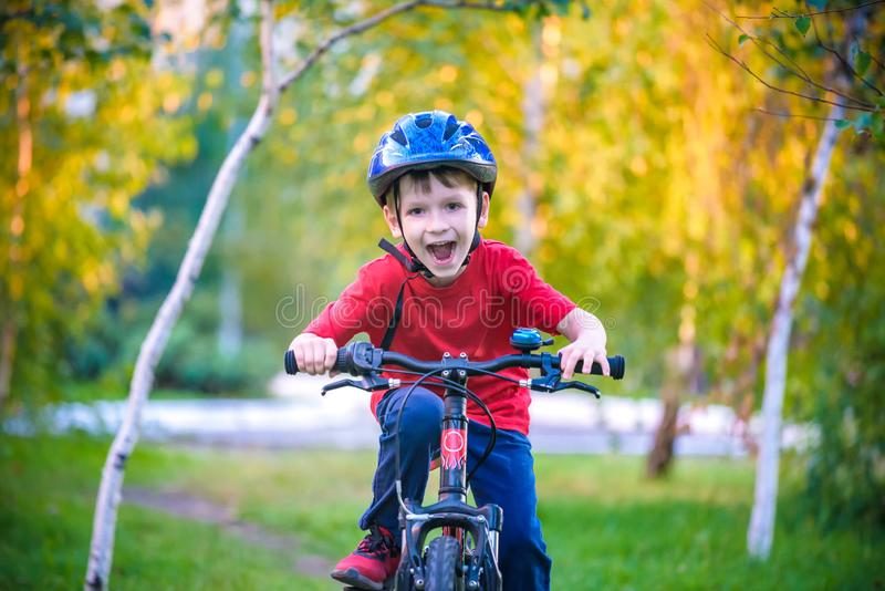 Happy kid boy of 6 years having fun in autumn forest with a bicycle on beautiful fall day. Active child making sports. Safety,. Sports, leisure with kids stock photography