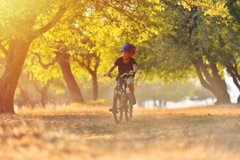 Happy kid boy of 7 years having fun in autumn park with a bicycle on beautiful fall day. Active child wearing bike helmet.  stock photos
