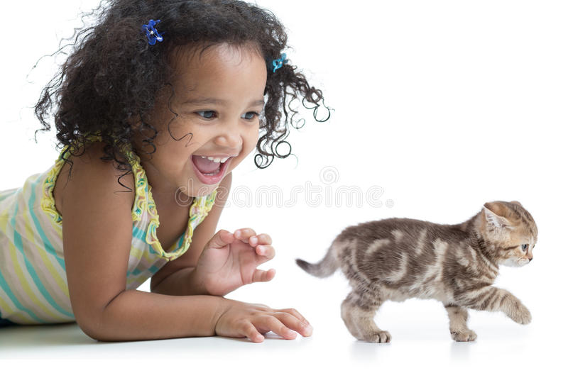 Happy kid girl playing with kitten. Isolated on white royalty free stock photos