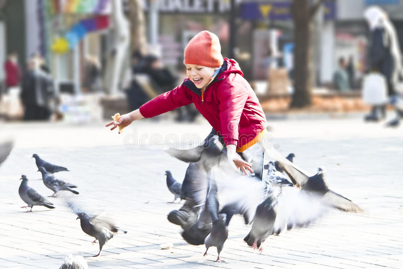 Happy kid playing with pigeons. In a city park royalty free stock images