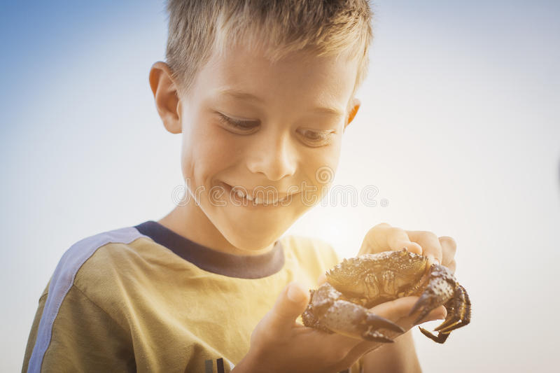 Happy kid is playing with a sea crab. Boy is playing with a sea crab royalty free stock photography