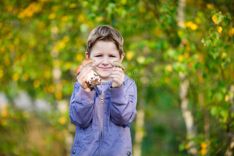 Happy kid with wild mushrooms royalty free stock image