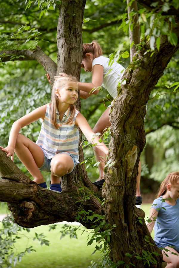 Happy kids climbing up tree in summer park stock photo