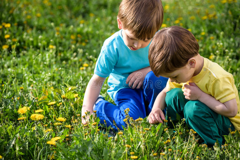 Happy kids enjoying sunny late summer and autumn day in nature on green grass. royalty free stock images