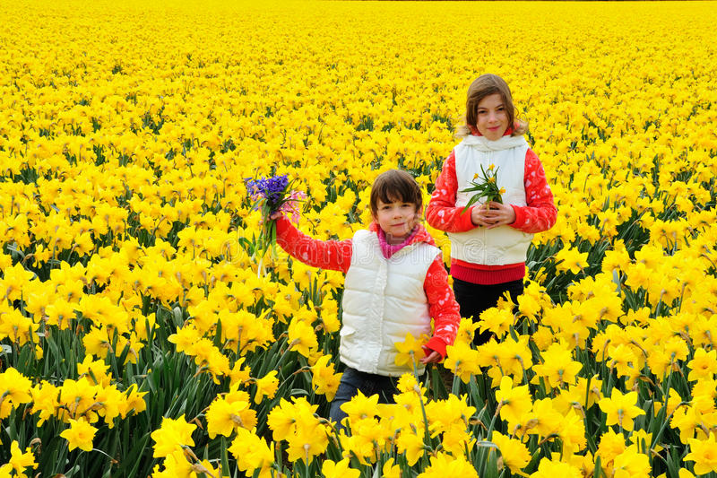 Happy kids with spring flowers on yellow daffodils field children download happy kids with spring flowers on yellow daffodils field children on vacation in netherlands mightylinksfo Choice Image