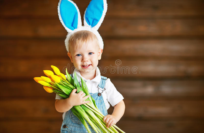 Happy laughing baby boy in bunny ears with yellow tulips on wo royalty free stock images