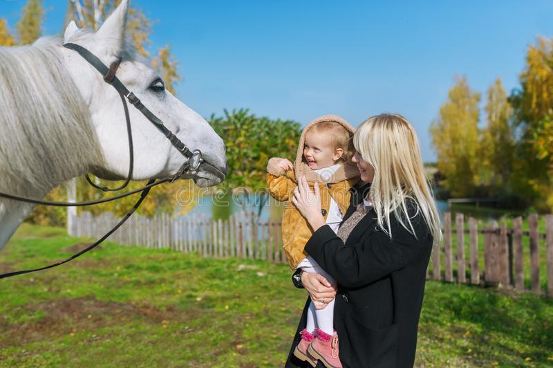 Happy laughing mother and baby daughter bonding with white beautiful horse stock image