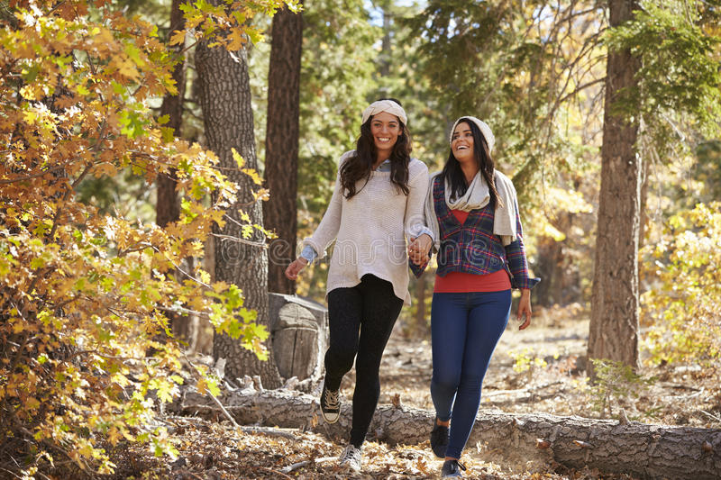 Happy lesbian couple walking in a forest holding hands stock photos